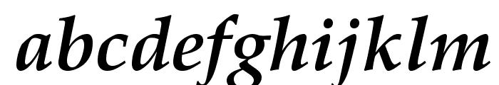 TeXGyrePagella-BoldItalic Font LOWERCASE