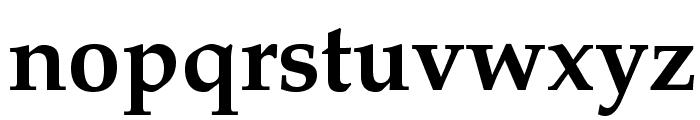 TeXGyrePagella-Bold Font LOWERCASE