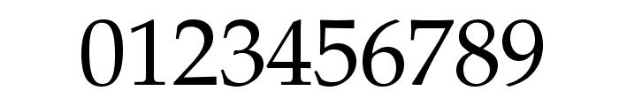 TeXGyrePagella-Regular Font OTHER CHARS