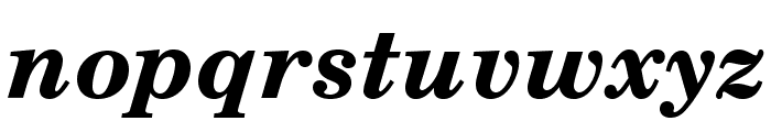 TeXGyreSchola-BoldItalic Font LOWERCASE