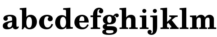 TeXGyreSchola-Bold Font LOWERCASE