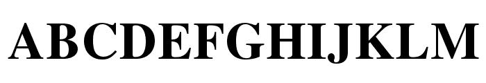 TeXGyreTermes-Bold Font UPPERCASE