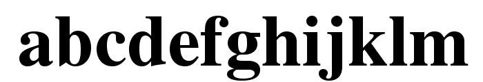 TeXGyreTermes-Bold Font LOWERCASE