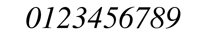 TeXGyreTermes-Italic Font OTHER CHARS