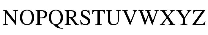 TeXGyreTermes-Regular Font UPPERCASE