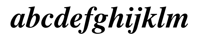 Tempora LGC Unicode Bold Italic Font LOWERCASE
