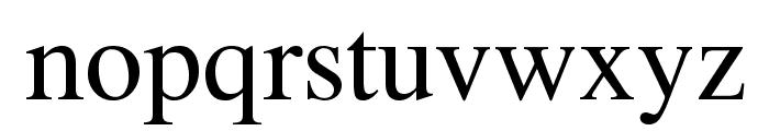 Tempus Regular Font LOWERCASE