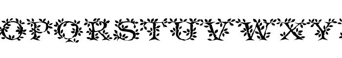 Tenderleaf Font UPPERCASE