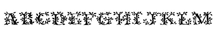 Tenderleaf Font LOWERCASE
