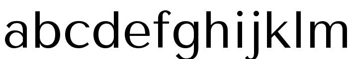 Tenor Sans Font LOWERCASE