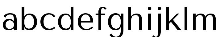 TenorSans Font LOWERCASE