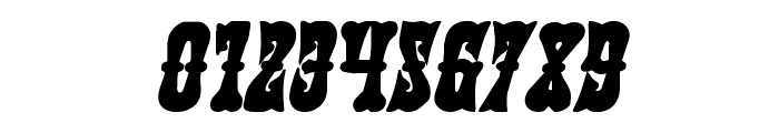 Texas Ranger Bold Italic Font OTHER CHARS