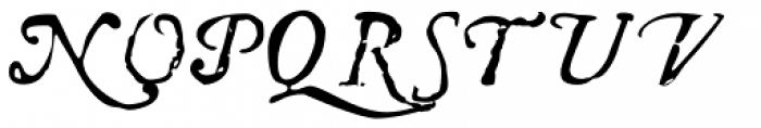 Telegdi Pro Alt Italic Font UPPERCASE