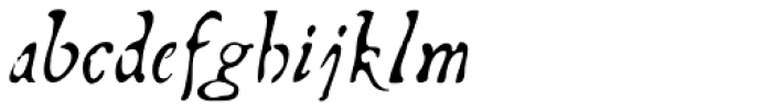Telegdi Pro Alt Italic Font LOWERCASE