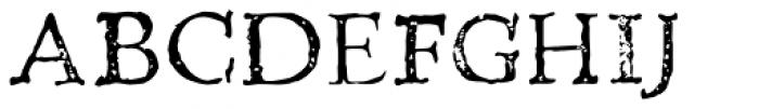 Telegdi Pro Reg Font UPPERCASE