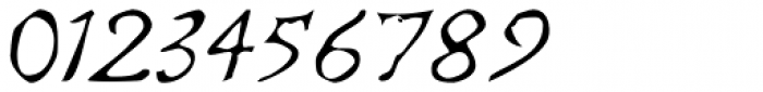 Telegdi Pro Script Font OTHER CHARS