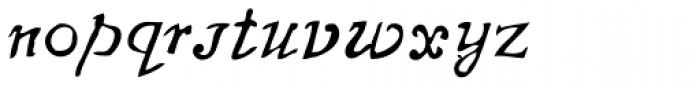 Telegdi Pro Script Font LOWERCASE
