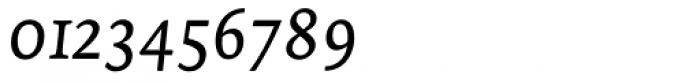 Tempera Biblio Book C Italic Font OTHER CHARS