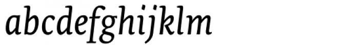 Tempera Biblio Book C Italic Font LOWERCASE
