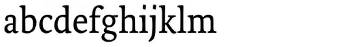 Tempera Biblio Pro Book B Font LOWERCASE