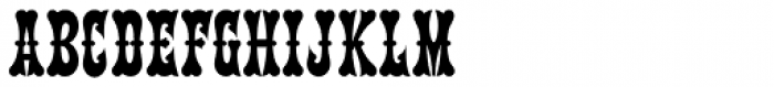 Terlingua NF Font LOWERCASE