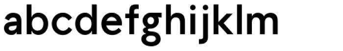 TG Aqsa Grotesque Pro Bold Font LOWERCASE