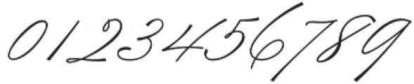 TheWeddingScript otf (400) Font OTHER CHARS