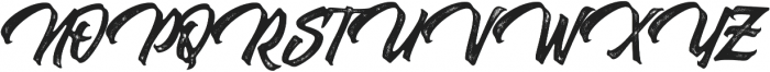 Thorky Rough otf (400) Font UPPERCASE