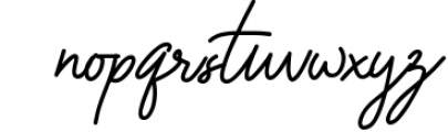 The Promised Signature Font Font LOWERCASE