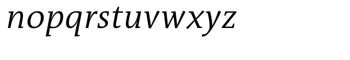 TheAntiquaB C2 SemiLight Italic Font LOWERCASE