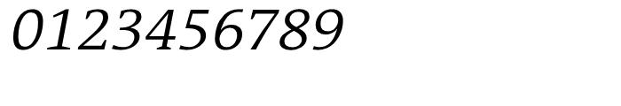 TheAntiquaB E3c 4c SemiLight Italic Font OTHER CHARS