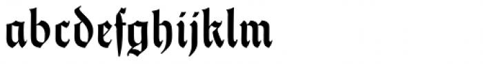 Thannhaeuser Fraktur DemiBold Font LOWERCASE