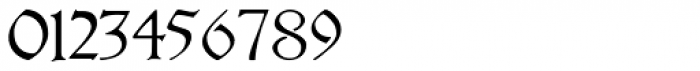 Theuerdank Fraktur Pro Font OTHER CHARS