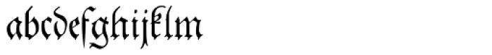 Theuerdank Fraktur Pro Font LOWERCASE