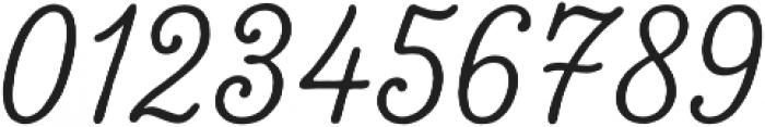 Tierra Script Salt otf (400) Font OTHER CHARS