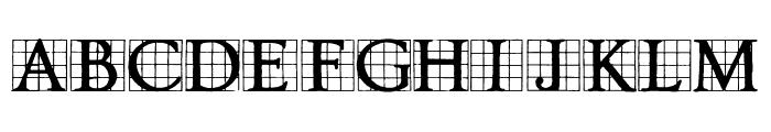Timesnow Font LOWERCASE
