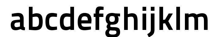 TitilliumText25L-800wt Font LOWERCASE