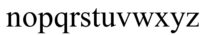 Times New Roman Font LOWERCASE