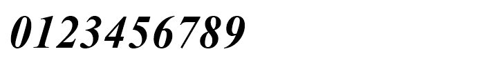 Times New Roman OS Bold Italic Font OTHER CHARS