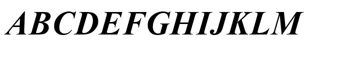 Times New Roman OS Bold Italic Font UPPERCASE