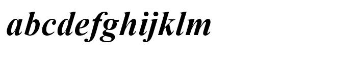 Times New Roman OS Bold Italic Font LOWERCASE
