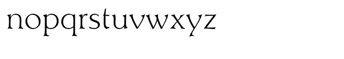 Titus Light D Font LOWERCASE