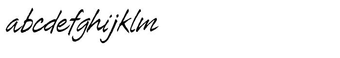 Tiza Regular Font LOWERCASE