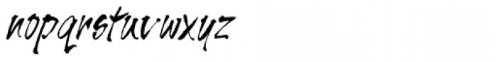 Tiger Rag Std Font LOWERCASE