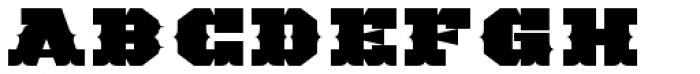 TigerCat DX 200 Black Font UPPERCASE