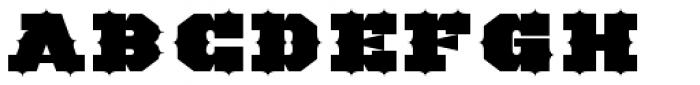 TigerCat IX 300 Black Font UPPERCASE