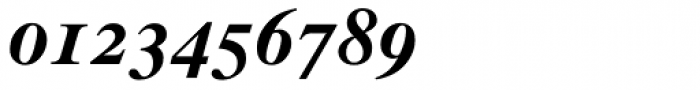 Times Bold Italic Old Style Figures Font OTHER CHARS