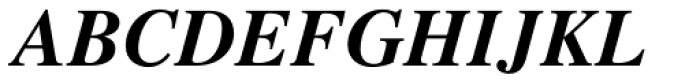 Times Bold Italic Font UPPERCASE
