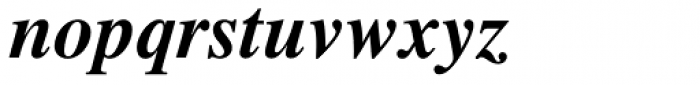 Times LT Std Bold Italic Font LOWERCASE