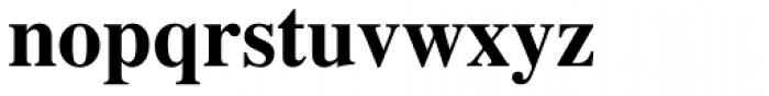 Times LT Std Bold Font LOWERCASE